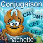 conjugaison hachette(2)