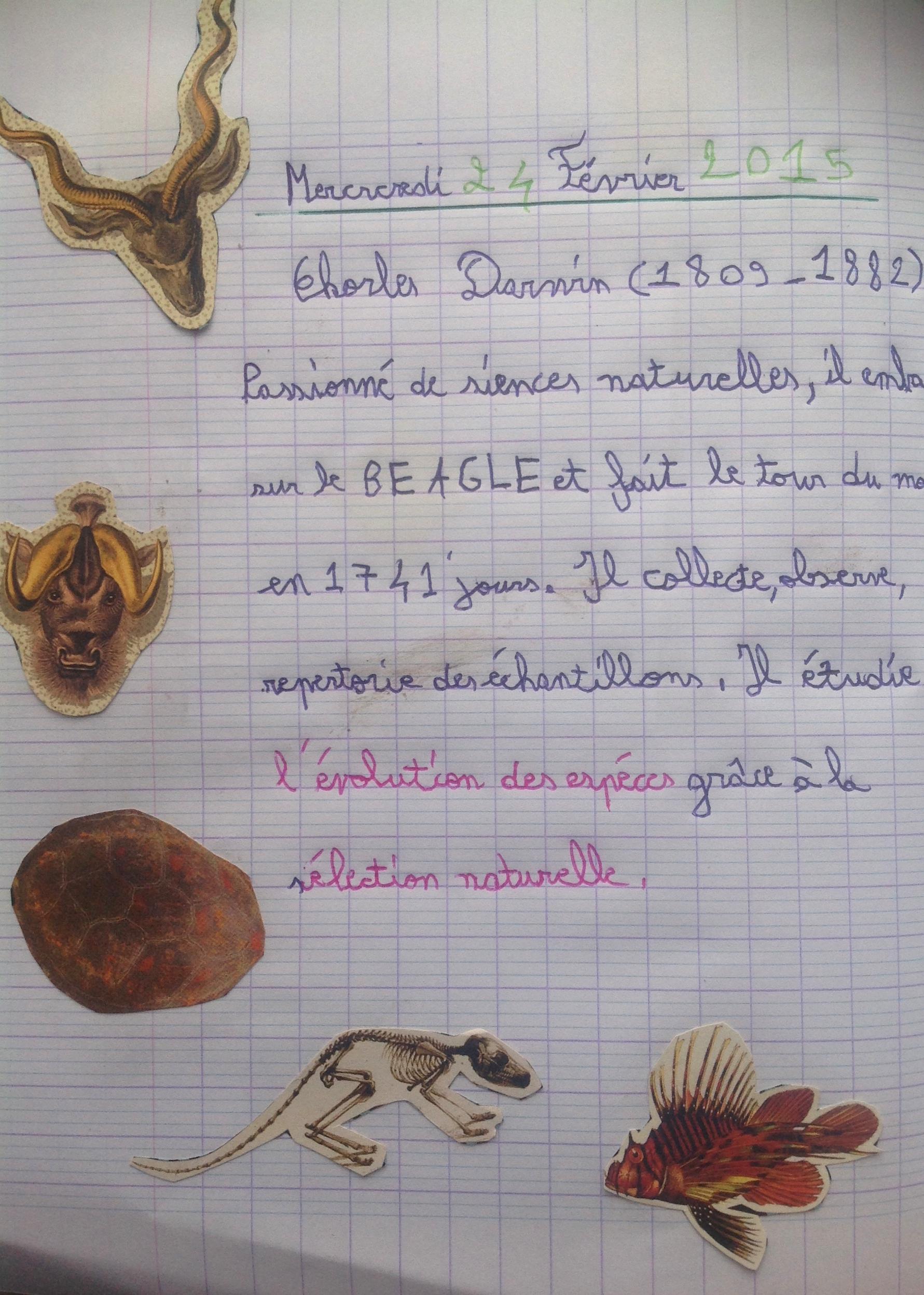 darwin cahier