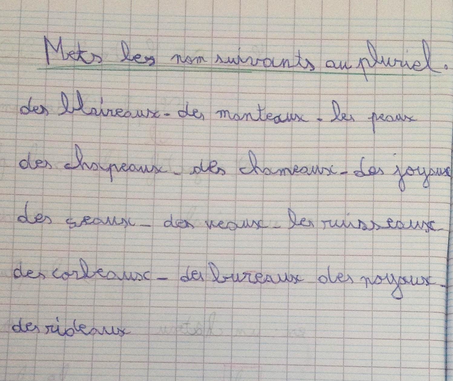 pl-des-noms-en-aux-cahier-julien